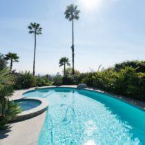 paradise-pool-pad-29