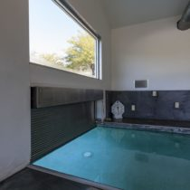 rad-pool-house-42